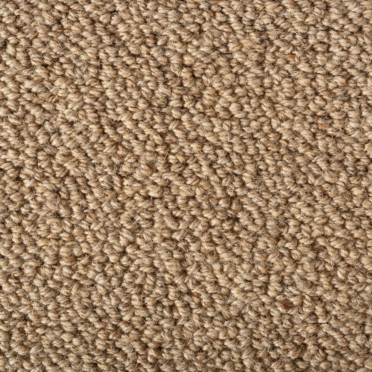 Mckinley Carpet Ideas