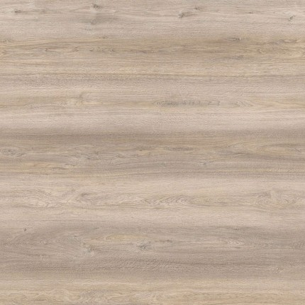 Ocean Oak  Amorim Wise Wood Pro