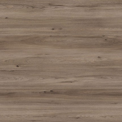 Quartz Oak Amorim Wise Wood Pro