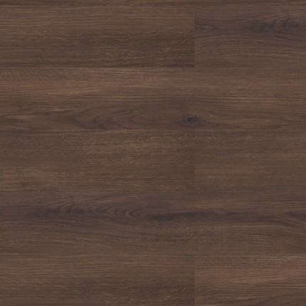 Dark Forest Oak (Amorim)