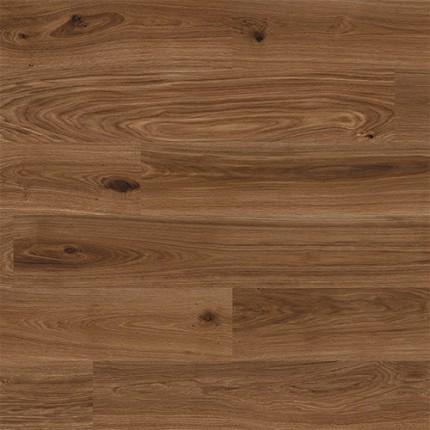 APC Cork Plank Collection - Jvaa