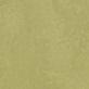 Avocado 3265