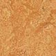 Sahara 3174