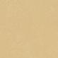 Venus 3726