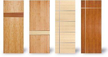 Flush Designer Doors